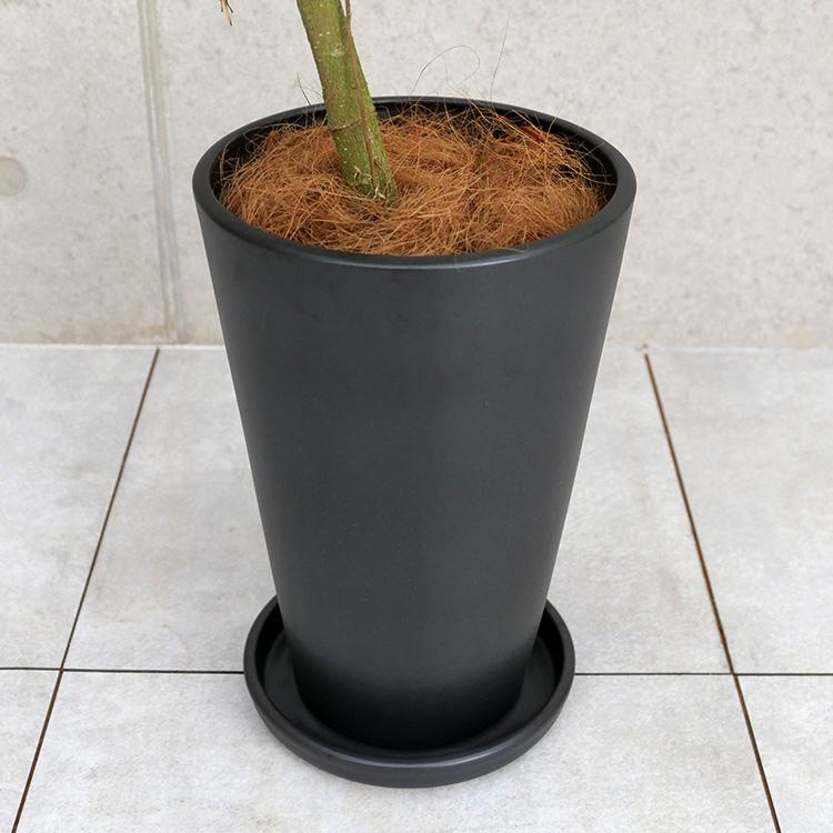 陶器鉢の写真(マットシリーズ/シーズン)
