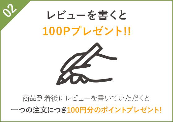 レビューを書くと100Pプレゼント!!